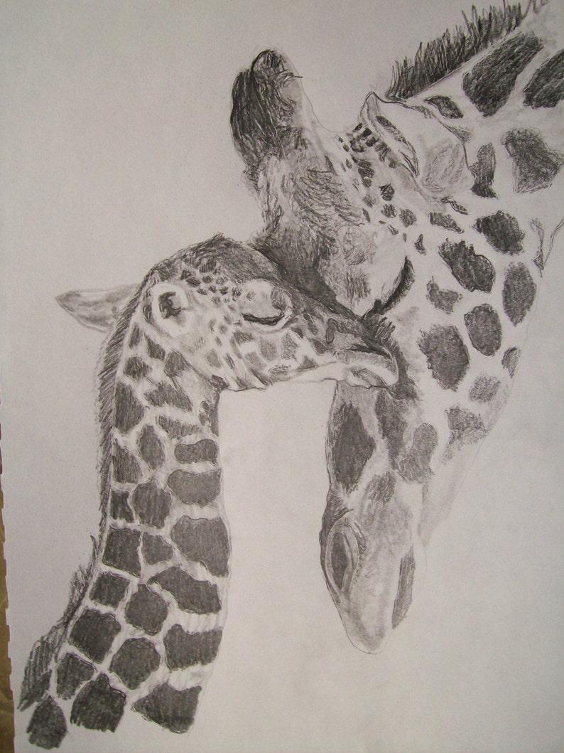 Giraffe portrait pencil sketch 9 x 12 inch u provide picture by pigatopia