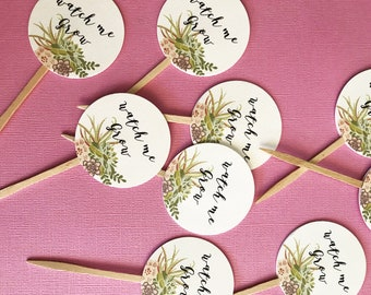Watch Me Grow Favor Tags sticks, Let Love Grow, custom tags, reception favors, bridal shower, baby shower, succulent design, wood picks