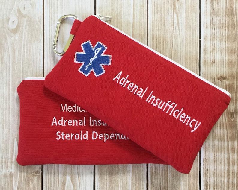 Medical Alert pouch First Aid Kit Epi-pen syringe Case image 0