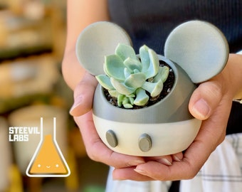 Mickey Mouse Minnie Mouse Steamboat Willie Inspired Planter Pot Succulent 3D Printed Garden Sculpture Modern Decor Plant