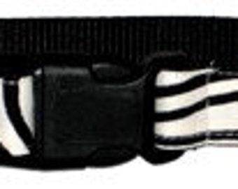 Zebra Stripe Dog Collar