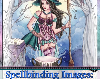 Adult Coloring Book - Printable Coloring Book - Fantasy Coloring Book - Digital Download - 20 Images to Color - Volume 5 - Nikki Burnette