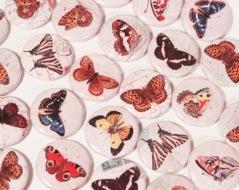 Vintage Colorful Butterfly Ephemera Drawings 1 Inch Pinback Buttons - Set of Six (6)