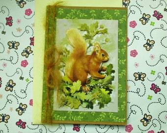 British Wildlife Squirrel Birthday Greetings Card - All Occasion - Blank inside ready for your message