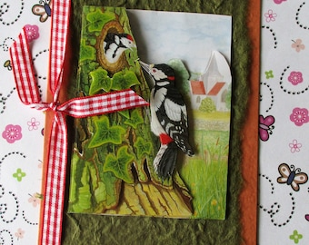 Acorn Woodpecker Bird Birthday Greetings Card - All Occasion - Blank inside ready for your message