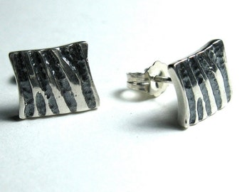 Zebra Striped Earrings