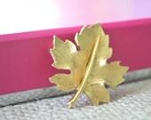 Maple Leaf Brooch, D 39 Orlan Brooch, D 39 Orian Pin, Maple Leaf Pin, 1950s Brooch, D 39 Orlan, Brooch,Vintage Brooch, Gold Brooch, Leaf Brooch