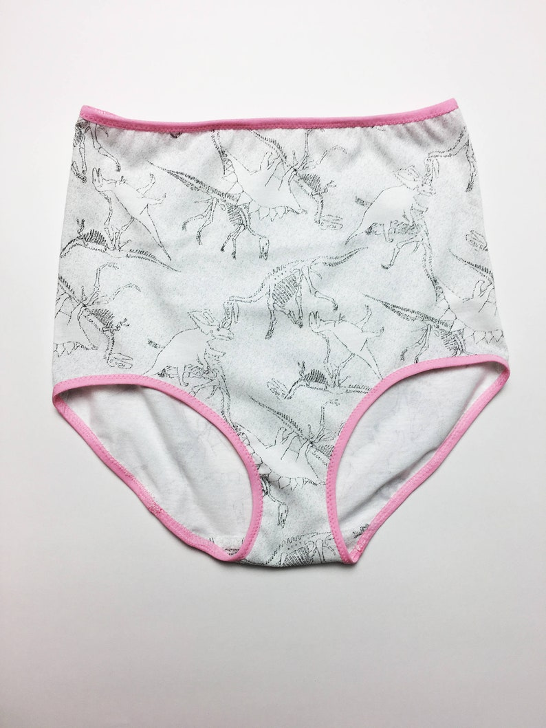 87dfe34dd64ab XL DINOSAUR Underwear Handmade Dinosaur Panties Diy High