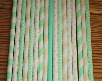 25  Tiana Party Straws -- The Princess and the Frog Paper Straws