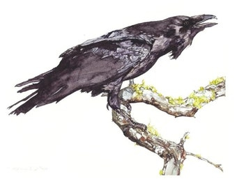 raven limited edition print