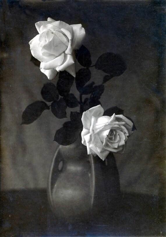 White Roses In Ceramic Vase Still Life Black And White Vintage Etsy