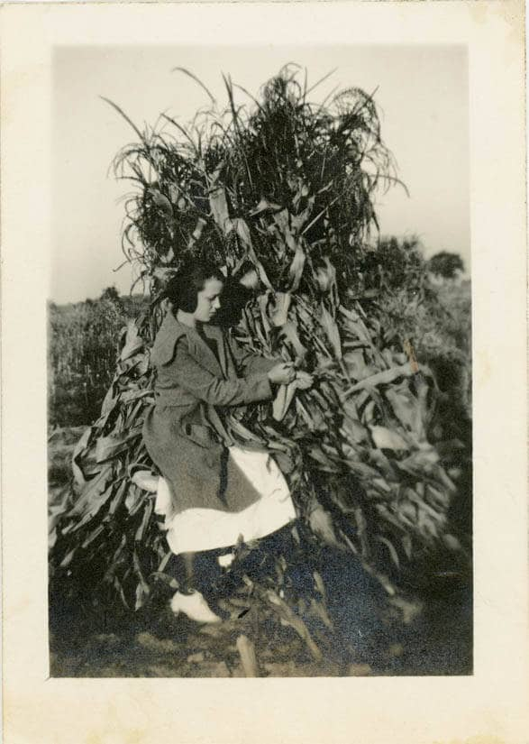 Vintage Photo 1920 Teen Girl Sits In Corn Field Tall Stacked  Etsy-4398