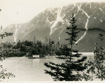 vintage photo 1923 Porcupine Island Kenai Lake Alaska