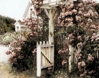 Mendocino Rose Gate Tinted Fine ARt Photograph