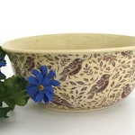 Hand Thrown Ceramic Bowl - Song Birds - Ready to Ship