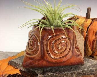 Medium Spiral Wall Pocket, Handmade Pottery, Plant Lover Gift, Air Plant Holder