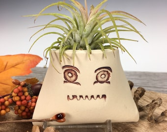 Funny Face Wall Pocket, Air Plant Holder, Plant Lover Gifts, Handmade Pottery, Ceramic Wall Pocket (FF1)