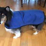 Reserved listing for Elizabeth - custom raincoat for Cali's little brother