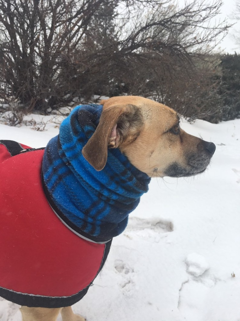 Blue Plaid Polar Fleece snood for MEDIUM size dog terrier image 0