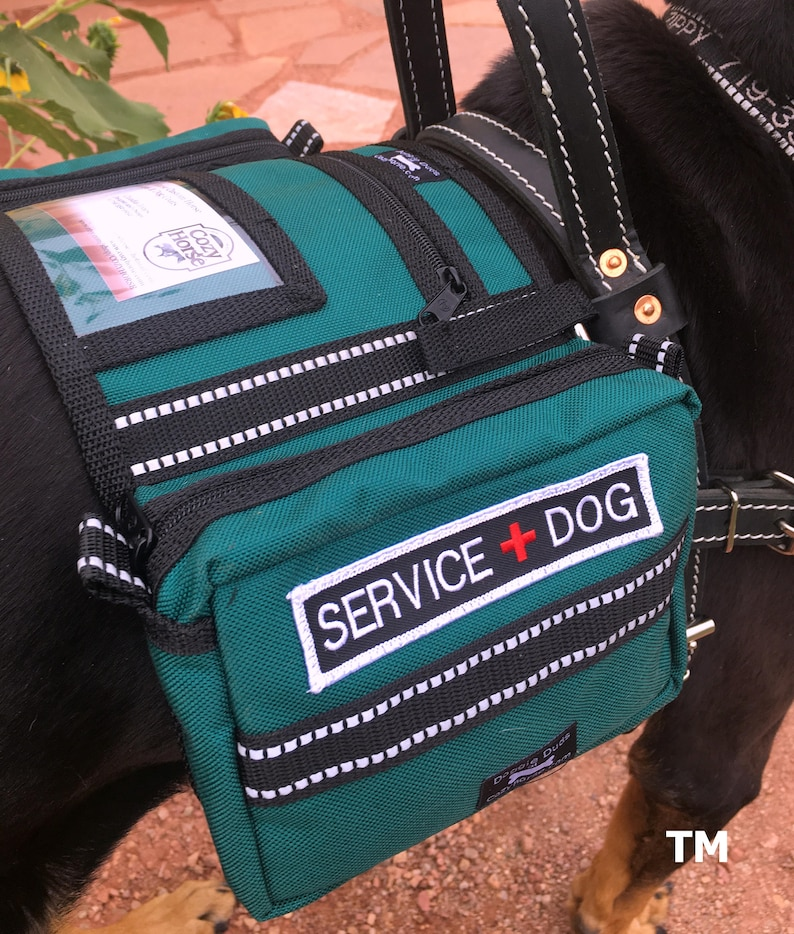 Teal Saddlebags with Service Dog patches  ID pocket for dog image 0