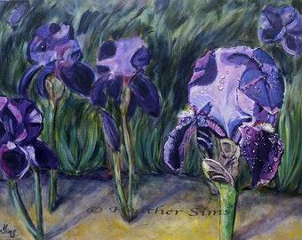 Purple Iris flower Wall Art Print, Iris Giclee, Floral Art Print, Living Room Wall Decor, Gift Idea, size mat options
