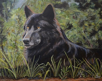Black Wolf fine art giclee print, acrylic painting reproduction, wall decor, signed by Heather Sims.  SIZE and mat Options