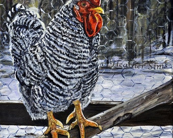 Chicken art print, Rooster kitchen decor, chicken decor, chicken print, farm animal, kitchen wall art, farmhouse decor, size mat option