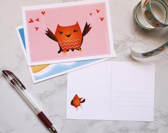 3-pack of Little Hoo postcards