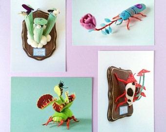 4 Postcard Set: Flora Insecta collection - bug insect plant photography toy notecard craft art felt sculpture HineMizushima