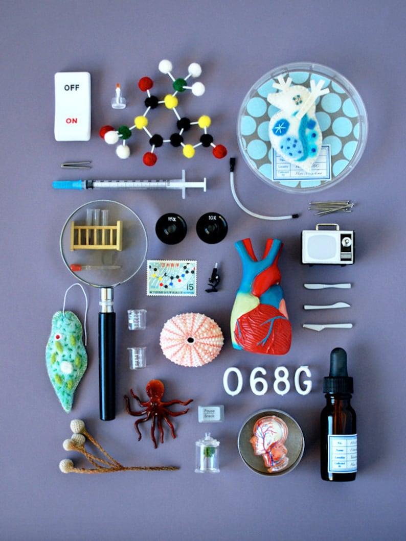 Print: Bioscience  Photograph Poster Science Lab Microbe image 0
