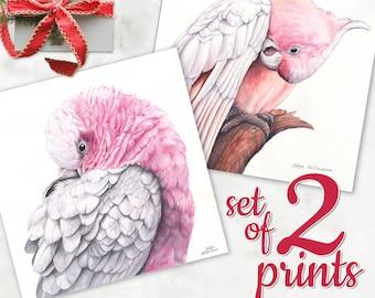 Pink Cockatoo print SET OF 2 - pink parrot print, galah wall art, major mitchell pink bird painting, pink and grey matching wall art set