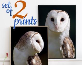 Barn Owl SET OF 2 prints - owl print matching wall art set, owl gifts, owl wall art, owl home decor, wildlife photography, moody art