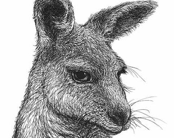 Kangaroo Art Print - Australian wildlife pen and ink drawing, Australian animal, Australian art, black and white illustration