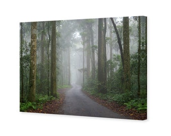 Green Mountains Road Canvas Wall Art - 75x50cm - photography by Nadya Neklioudova, nature decor, foggy forest print