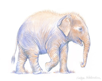 Baby Asian Elephant - 5x7inch Art Print - FAE Elephant Hospital - art for charity