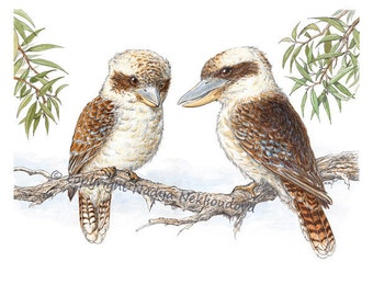 Kookaburras - Australian Wildlife Fine Art Print, Australian nature decor, woodland bird painting, Australian art watercolour bird art print