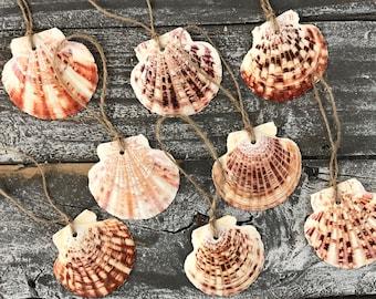 Tropical Sea Shell Christmas Ornaments, Shell Ornaments, Beach Christmas Ornaments, Beach Decor, Coastal Christmas Home Decor, Set of 8