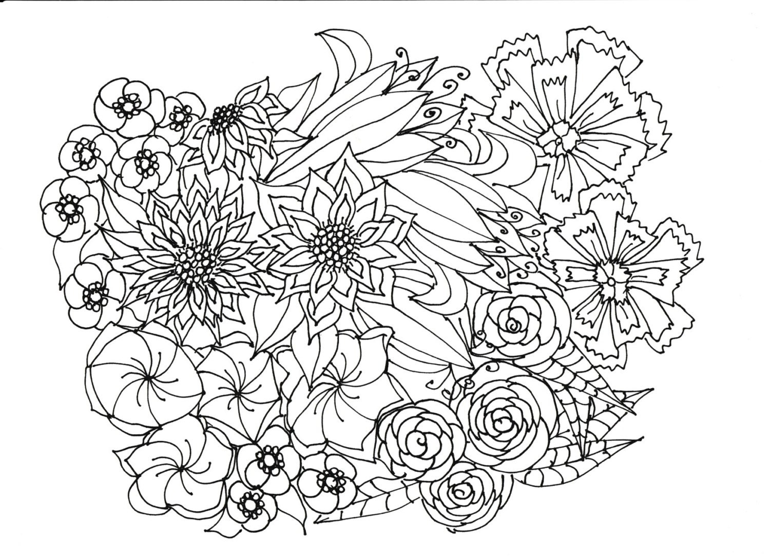 coloring pages of bladderworts plants - photo#14