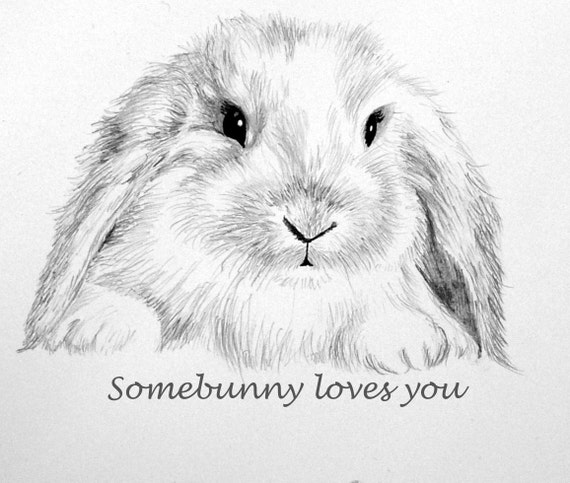 Bunny Note Card Pencil Drawing Some Bunny Loves You