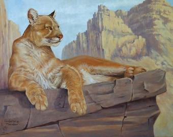 Note Card - Cougar - Mountain Lion - Puma