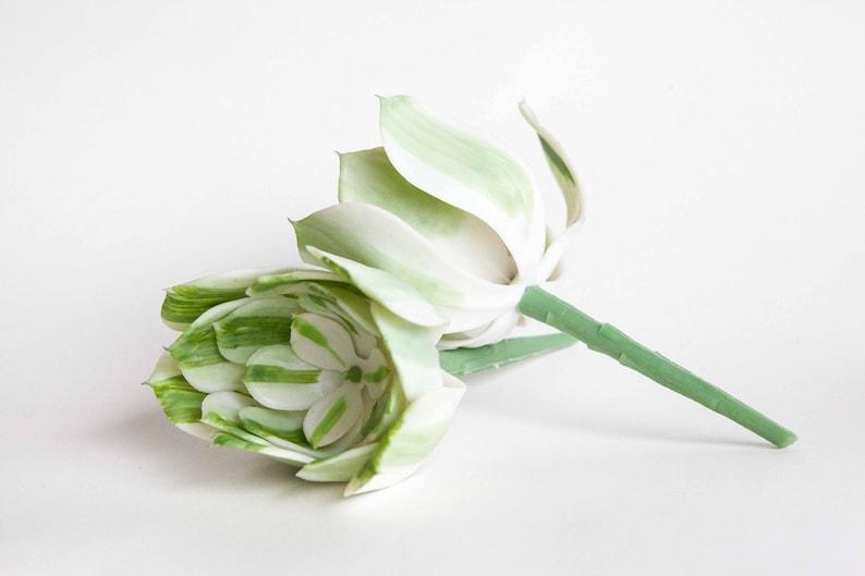 Fake Succulents Succulent Succulents One Larger Artificial Echeveria Succulent in White and Green Striped ITEM 01253