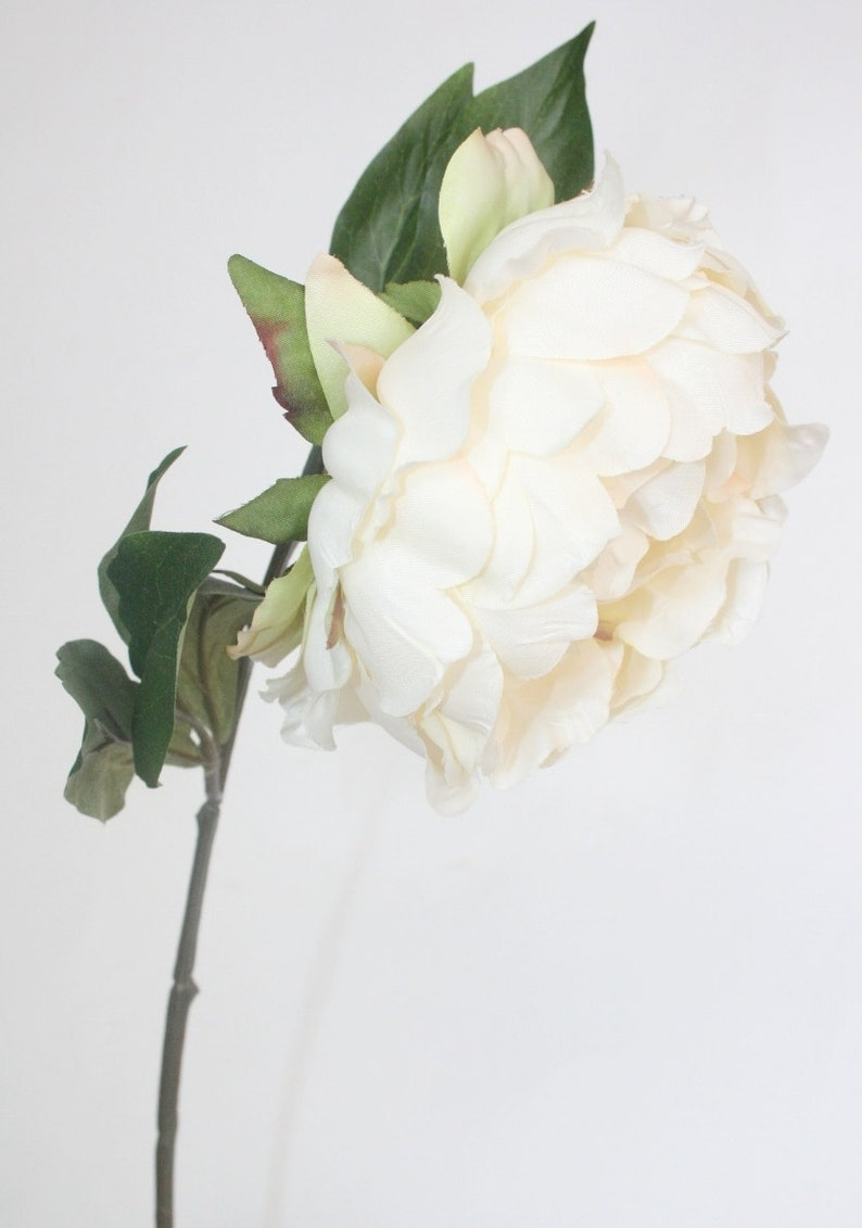 Stunning Artificial Peony in Ivory Cream ON or OFF Stem  19 Peony ON STEM