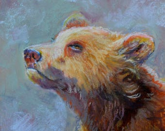 Bear a pastel painting by Pattie Wall