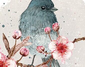 Bird and cherry blossom 5 x 7 print