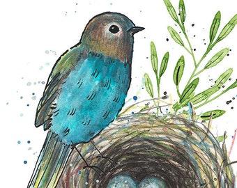 Bluebird and nest 5 x 7 print