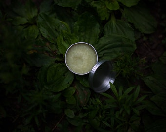 magic bite balm-plantain and lavender salve