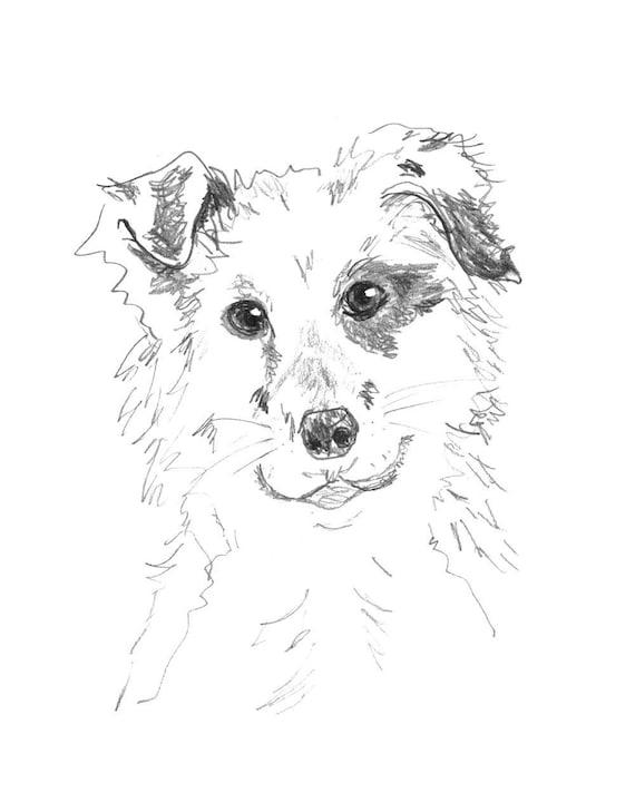 Disegno Cane Bianco E Nero.Stampa In Bianco E Nero Disegno Matita Pup Macchiato Matita Border Collie Cucciolo Schizzo Disegno Ritratto Cane Arte Disegno Degli Animali