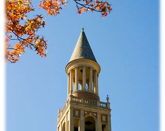 UNC-Chapel Hill Bell Tower & Fall Leaves