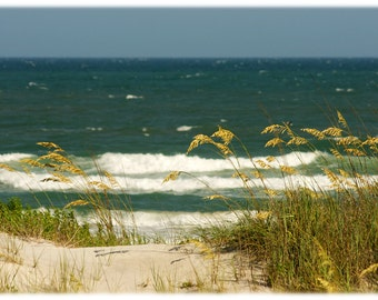 Topsail Island Dunes