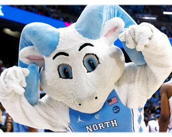UNC-Chapel Hill Rameses Jr